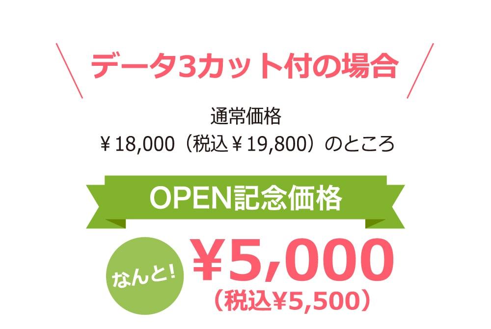 データ3カット付の場合 通常価格 ¥18,000(税込¥19,800)のところOPEN記念価格なんと!¥5,000(税込¥5,500)