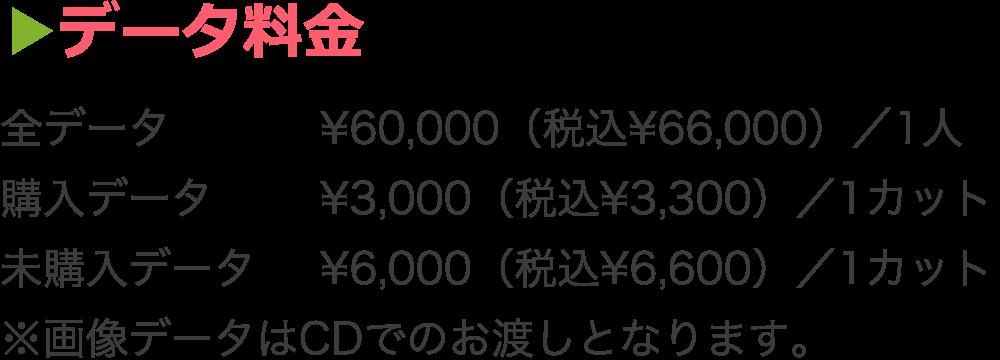 データ料金  全データ ¥60,000(税込¥66,000)/1人、 購入データ ¥3,000(税込¥3,300)/1カット、 未購入データ ¥6,000(税込¥6,600)/1カット  ※画像データはCDでのお渡しとなります。