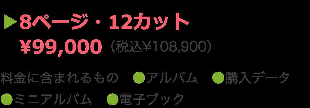 ▶8ページ・12カット  ¥99,000(税込¥108,900)  料金に含まれるもの ●アルバム ●購入データ ●ミニアルバム ●電子ブック