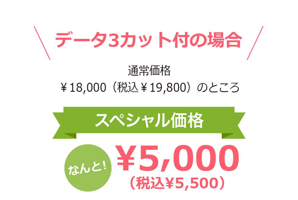 データ3カット付の場合 通常価格 ¥18,000(税込¥19,800)のところスペシャル価格なんと!¥5,000(税込¥5,500)